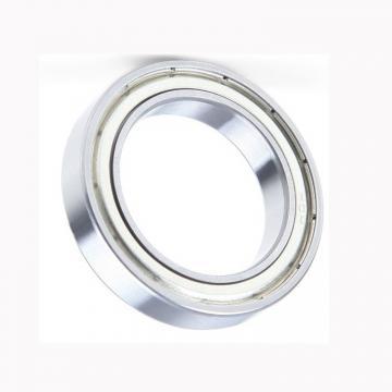 China Brand SKF, NSK, NTN, Koyo NACHI 6001 6002 6003 6004 6201 6202 6203 Deep Groove Ball Bearing