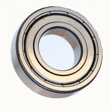 6004 SiN full ceramic bearing